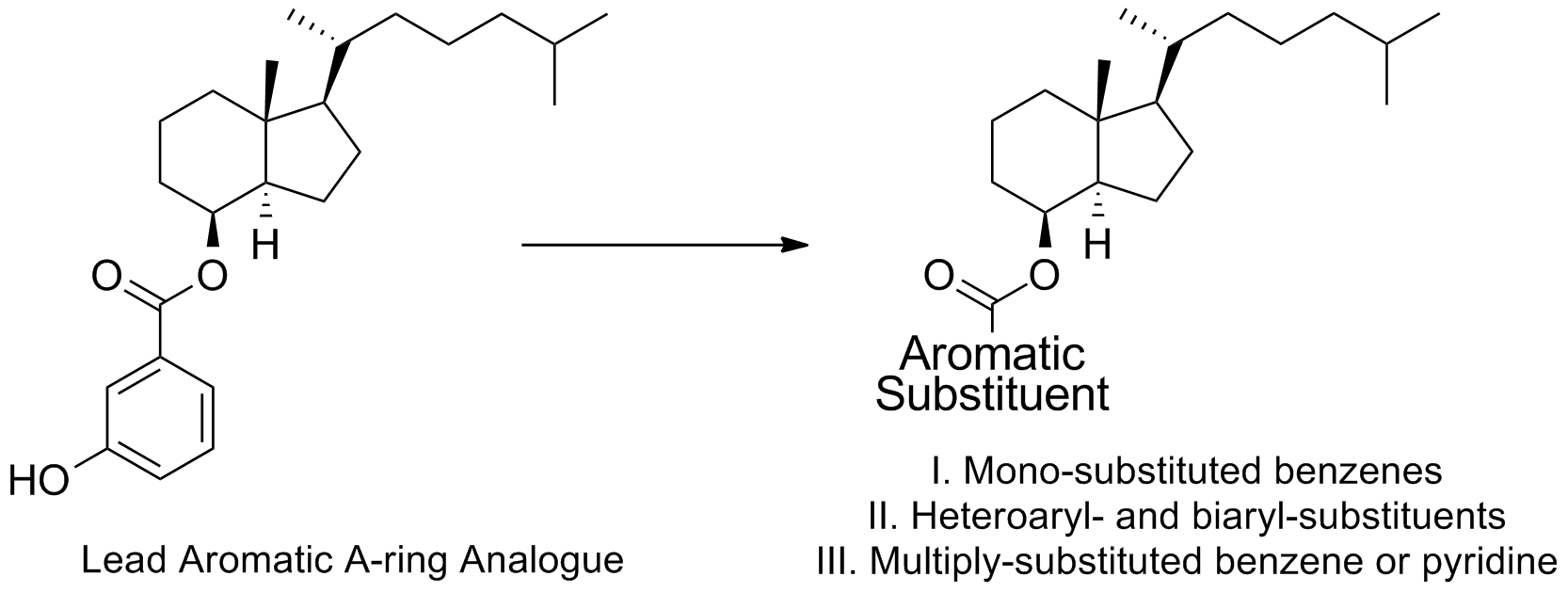 Graphical Abstract Aromatic A-Ring JMC