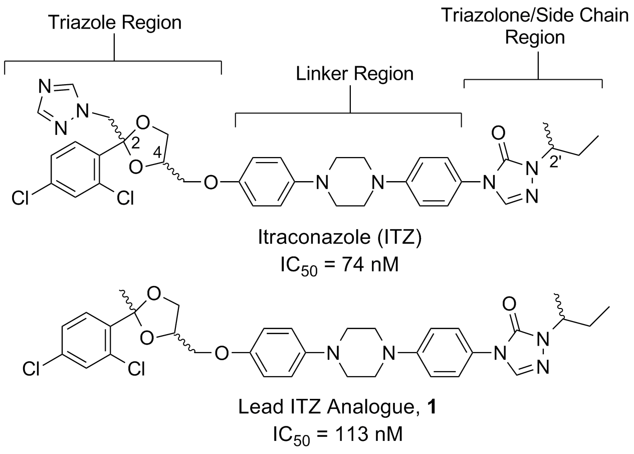 Repurposing Itraconazole as an Anti-Cancer Agent | Hadden Research Lab