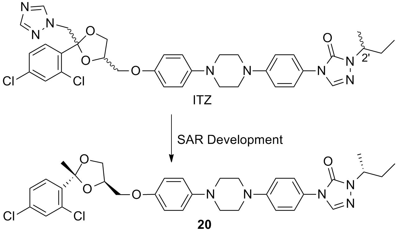 JP ITZ J Med Chem